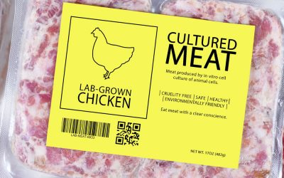 Cultured-Meat2
